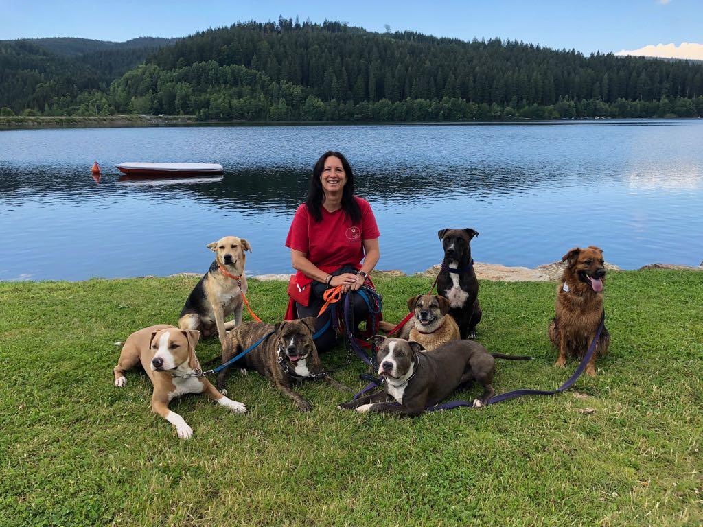 Hundeführercamp Sommer 2018