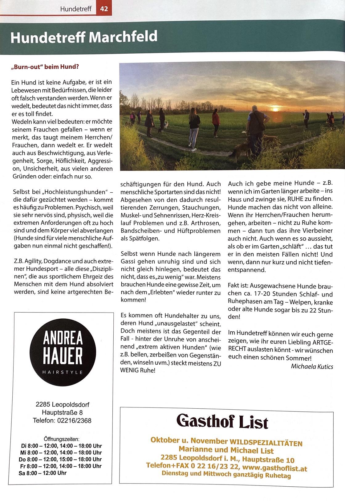 Gemeindezeitung 2020